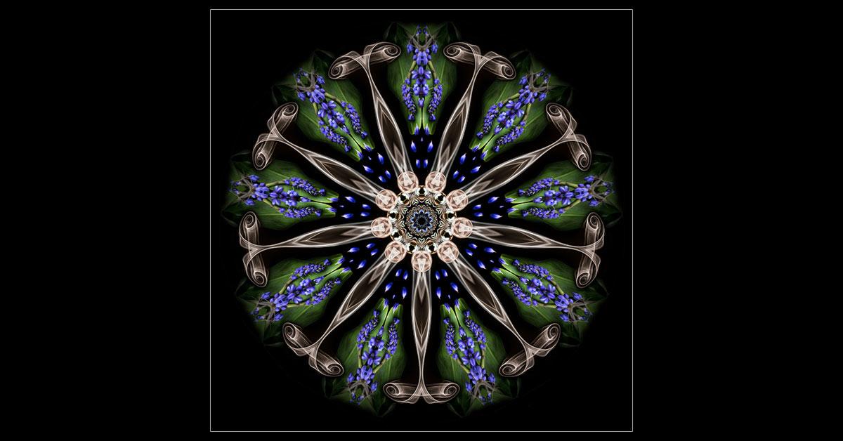 Blue Ginger Mandala